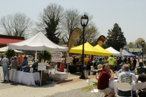 9th Annual Lake Country Wine Festival